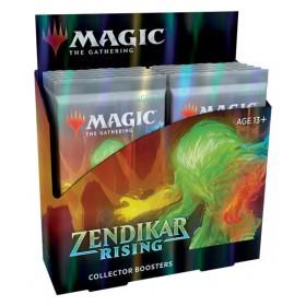 Zendikar Rising Collectors Display -- Englisch